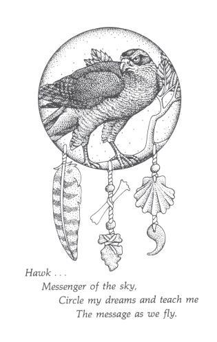 Hawk med