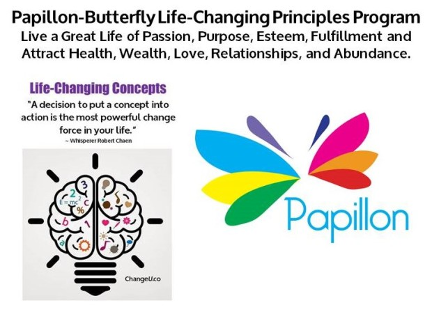Papillon Life-Changing Concepts.jpg