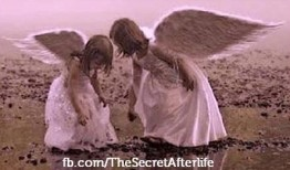 Twin Angels Icon