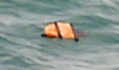3. orange lifejacket