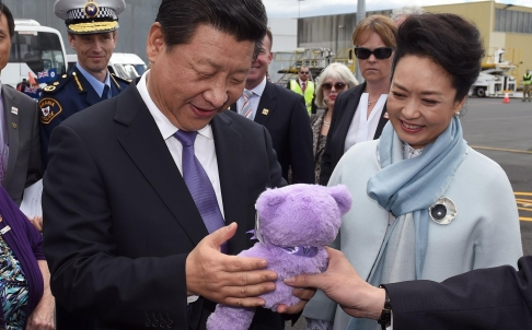 Xi Jinping - purple bear