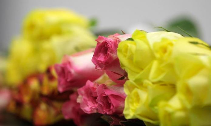 Roses are seen at Elite Flowers, one of the largest floral distributors in the United States