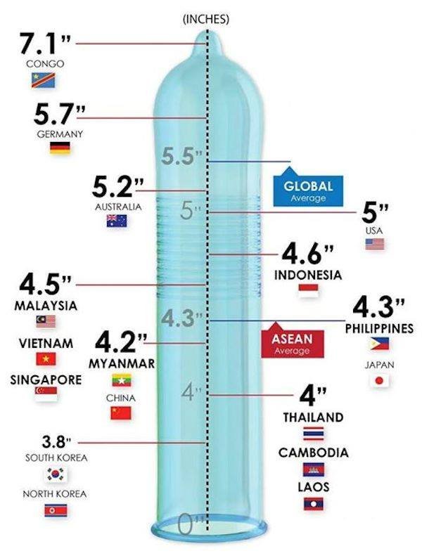 Large penis measurements