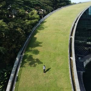--ONE TIME USE ONLY--  --NO ARCHIVES--  This handout image shows an instagram image of a person a a green grass bridge taken by Nuno Assis.  07APR15   [18JUN2015 LEAD FEATURE 2 48HRs ]