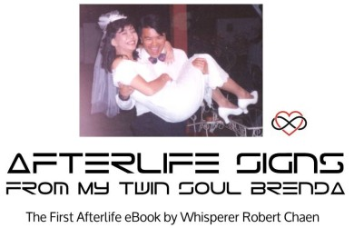 Afterlife Signs from my Twin Soul Brenda - eBook Banner