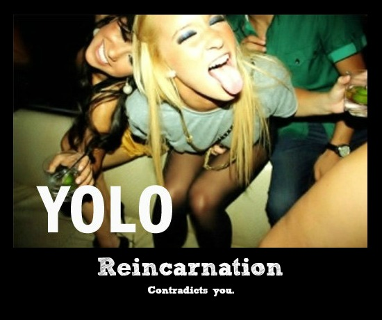 yolo_vs__reincarnation_by_unique_goddess-d5d4h5i