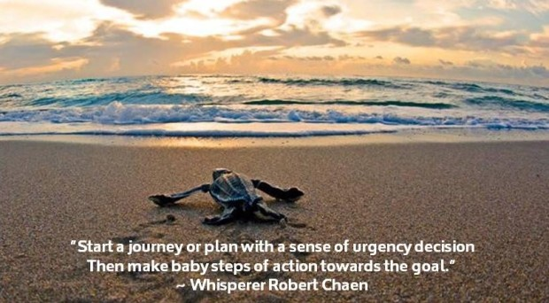 Start journey or plan with an urgent decision, then baby steps of action.jpg