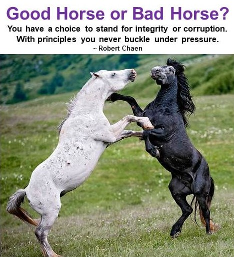 Good Horse or Bad Horse