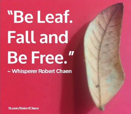 Be Leaf - RC