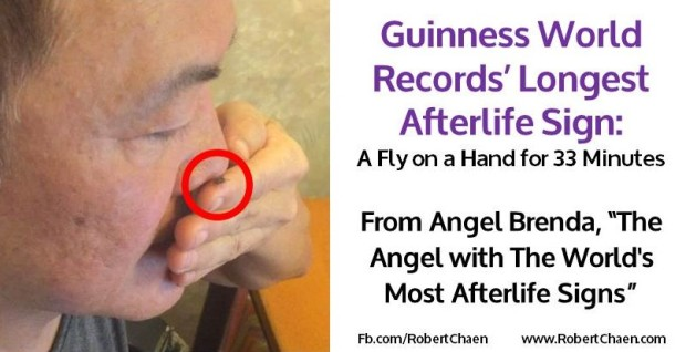 guinness world records' longest afterlife sign