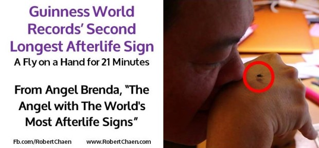 guinness world records' second longest afterlife sign
