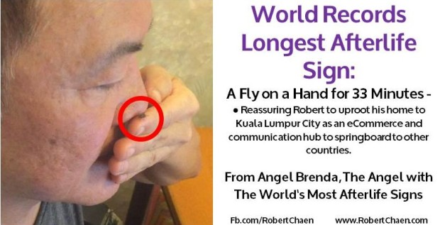 World Records Longest Afterlife Sign - Fly