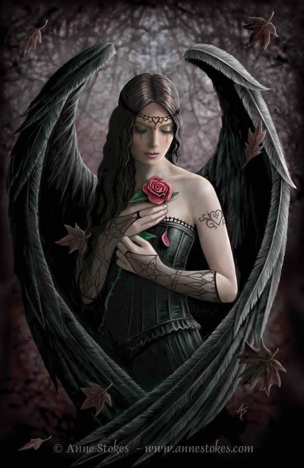 Angel Rose by Anne Stokes.jpg