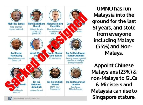 Appoint Chinese Malaysians (23%)