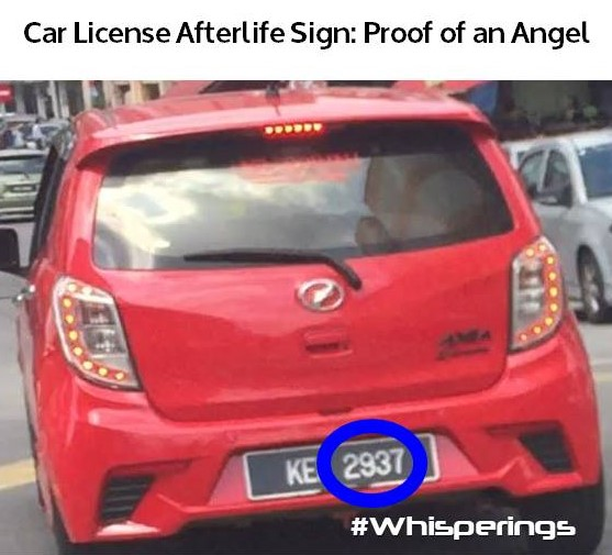 2937 Car License Afterlife Sign.jpg
