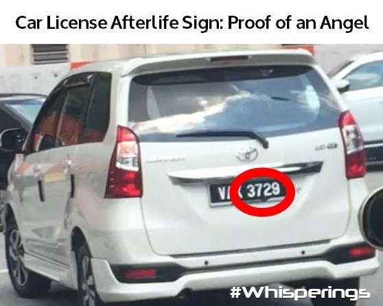 3729 Car License Afterlife Sign