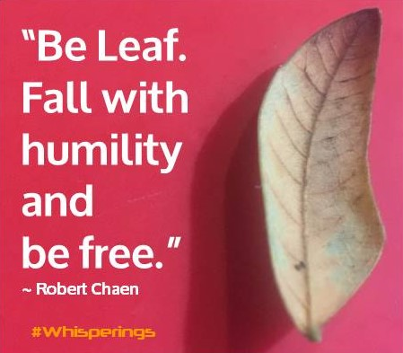 Be Leaf. Fall with humility and be free.