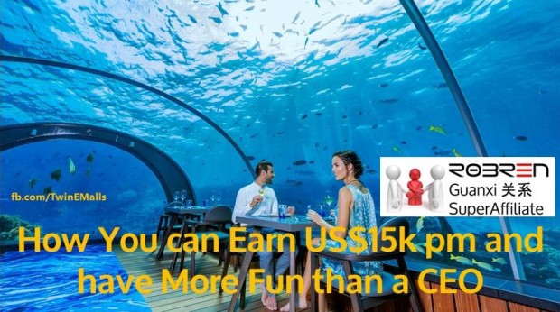 How you can earn US$15k pm and have more fun than a CEO